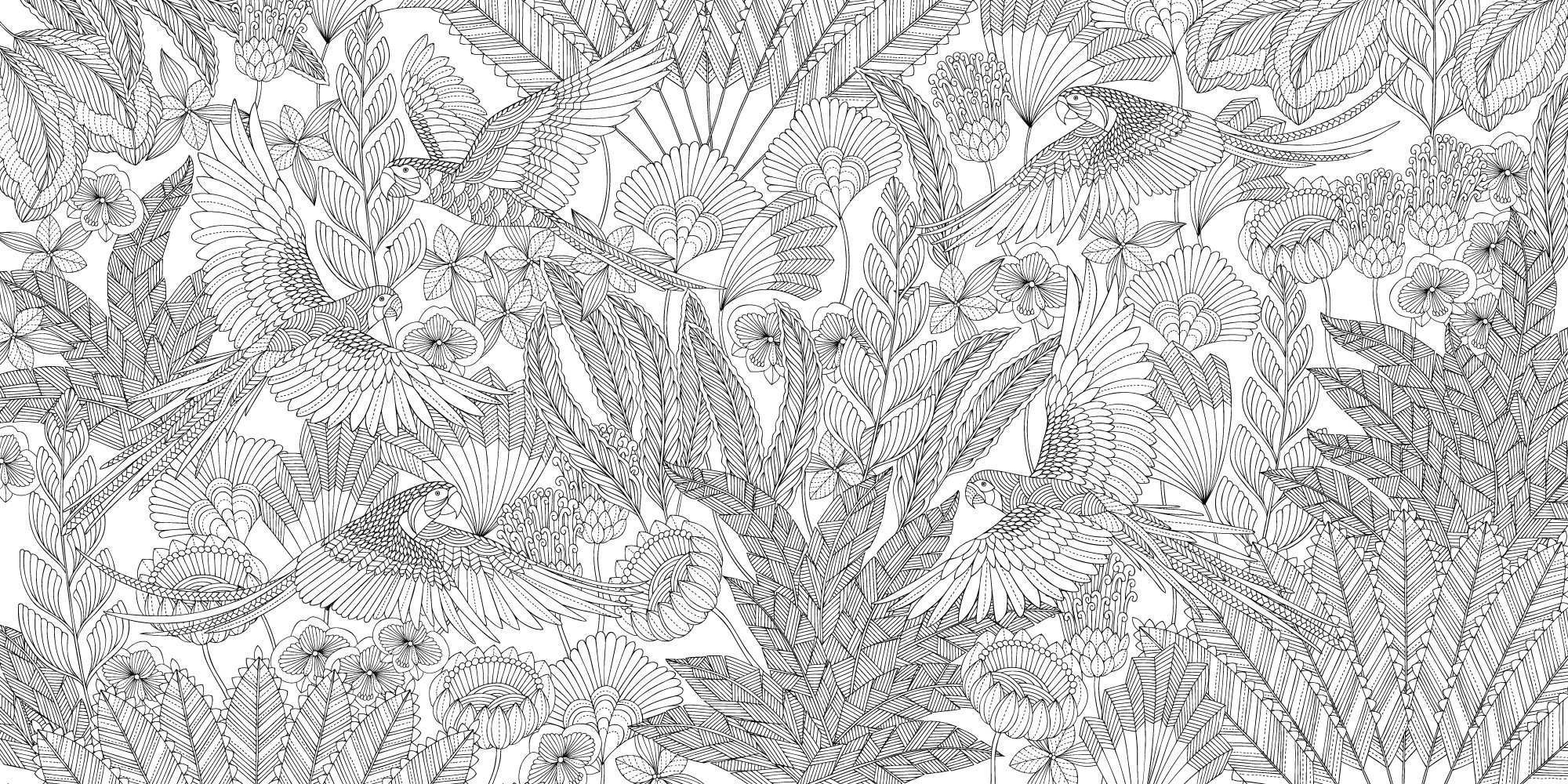 millie marotta u0027s tropical wonderland a colouring book adventure