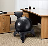 PharMeDoc Balance Ball Chair with Back Support