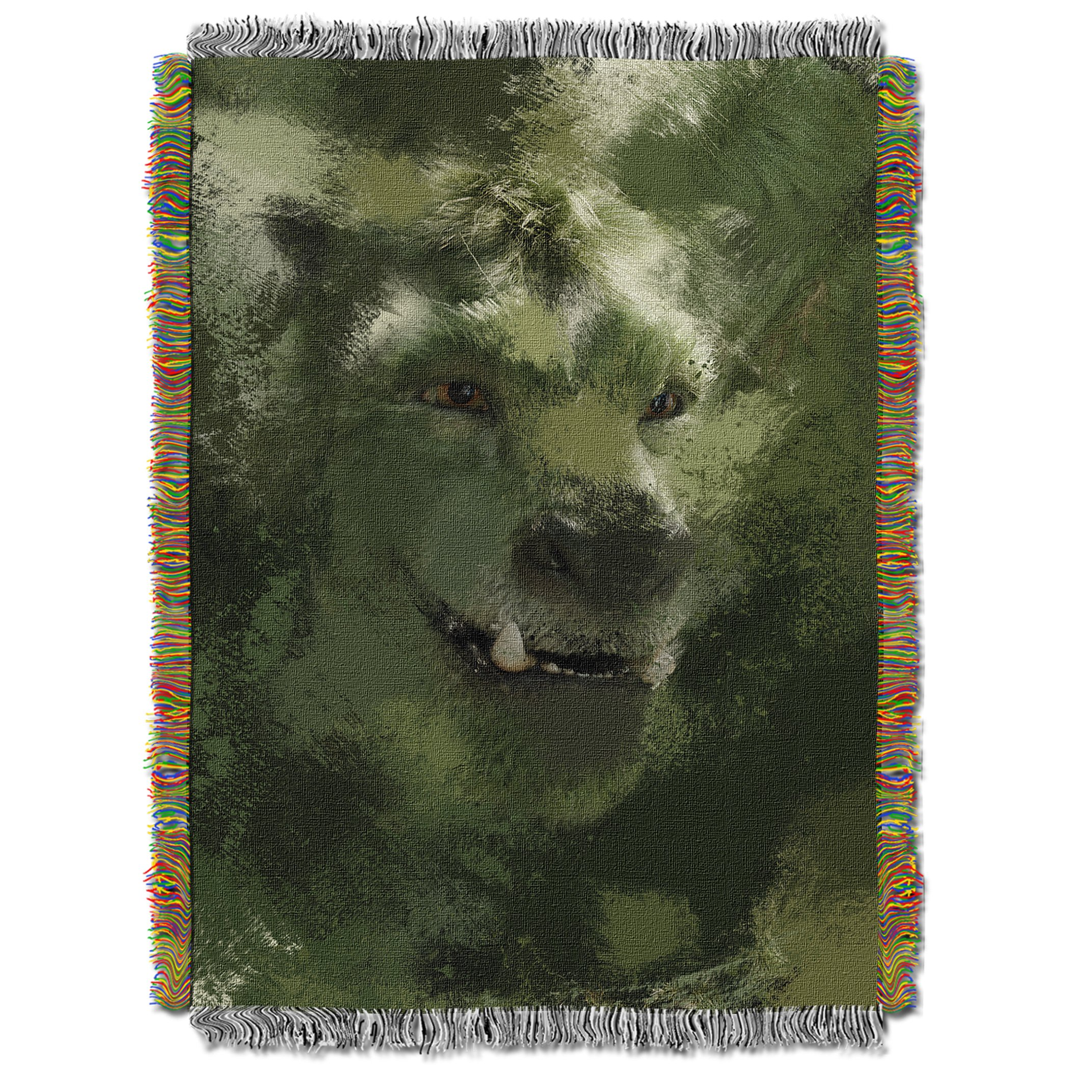 Disney's Pete's Dragon, ''Through the Green'' Woven Tapestry Throw Blanket, 48'' x 60'', Multi Color by The Northwest Company