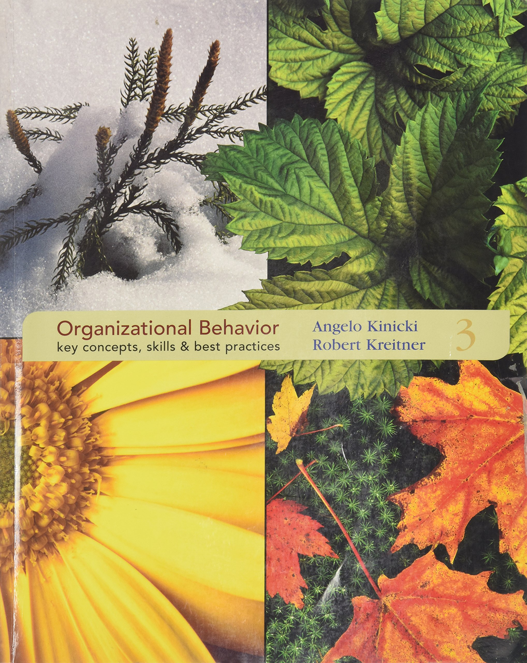 organizational behavior key concepts skills best practices organizational behavior key concepts skills best practices 3rd edition com books