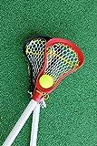 Kids Lacrosse Sticks - 2 Sticks (30 Inches) & 1