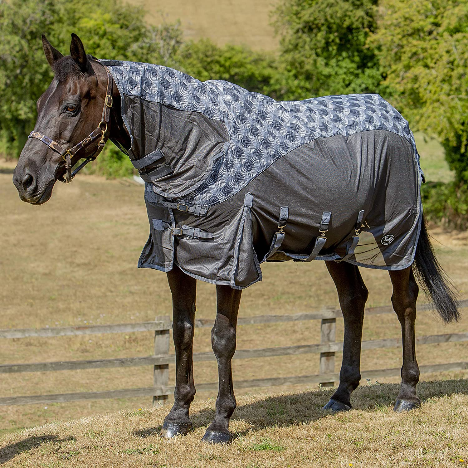 Grey Pattern 2025 4'9\ Grey Pattern 2025 4'9\ Gallop 2-in-1 Fly Rug Turnout (2025 4'9  EU 95cm, Grey Pattern)