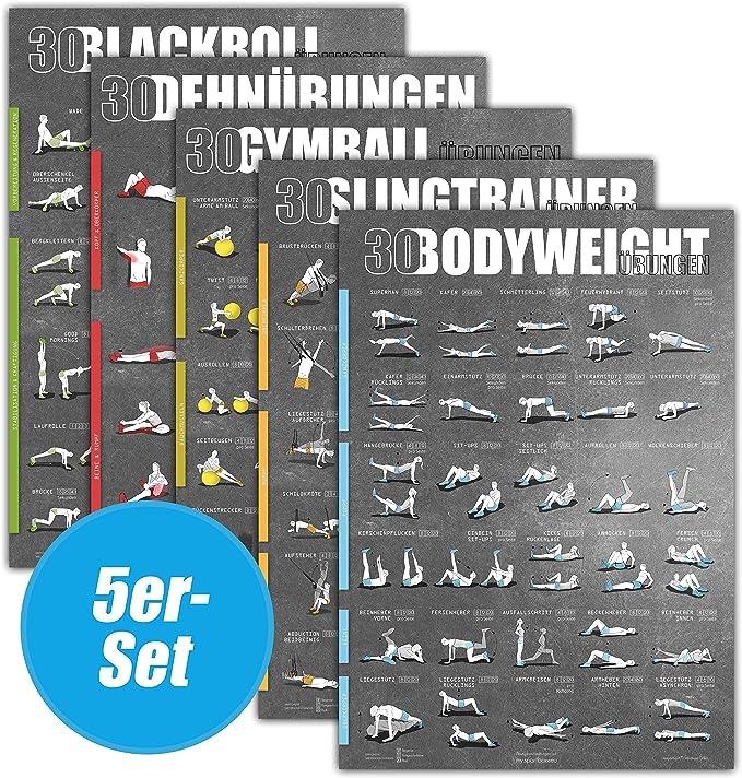 Set de 5 pósters con ejercicios DIN A1 con 5 x 30 Ejercicios (bodyweight, slingtrainer, gymball, estirar, blackroll): Amazon.es: Deportes y aire libre