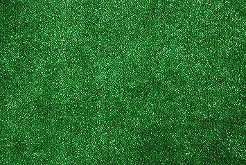 Indoor/Outdoor Green Artificial Grass Turf Area Rug ...