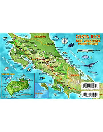 Costa Rica Dive Map & Pacific Reef Creatures Guide Franko Maps Laminated Fish Card