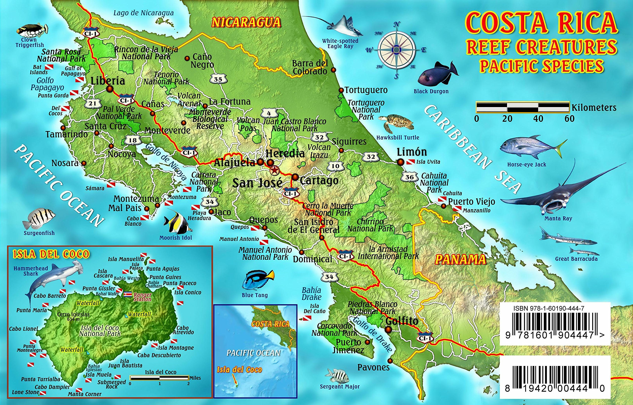 Costa Rica Dive Map Pacific Reef Creatures Guide Franko Maps