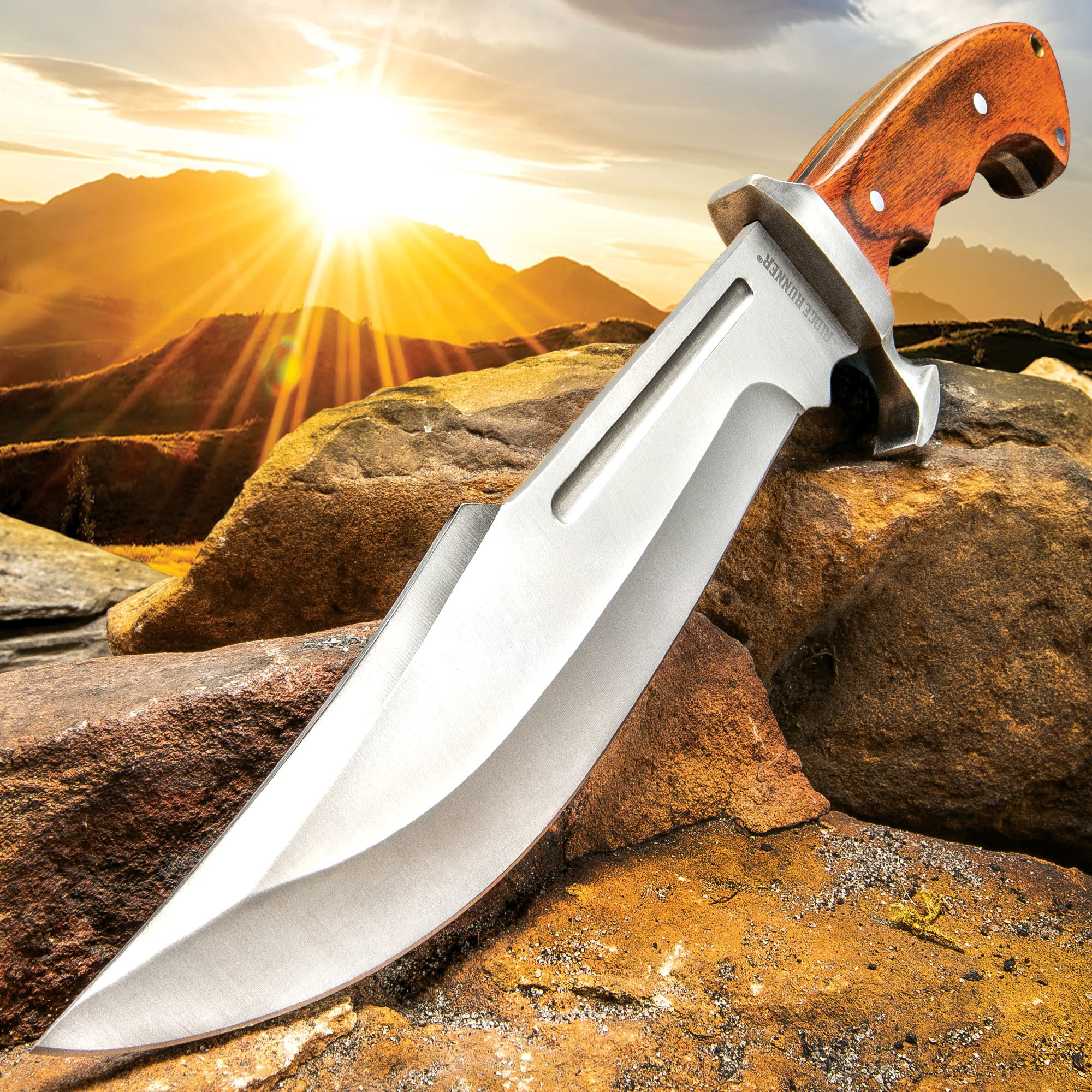 Ridge Runner Woodland Reverie Bowie/Fixed Blade Knife - Stainless Steel, Full Tang - Genuine Zebrawood - Nylon Sheath - Collecting, Field Use, Display and More - 14 1/2''