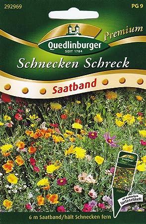 Ganz und zu Extrem SB Schnecken Schreck, blühende Mischung: Amazon.de: Garten &PT_54
