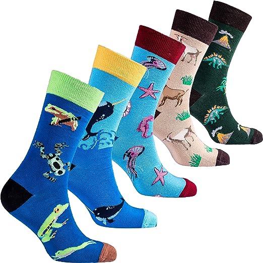 Socks n Socks-Boys 5-pair Fun Cool Cotton Colorful Dress Crew Socks Gift Box