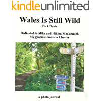 Wales Is Still Wild: A Photo Journal
