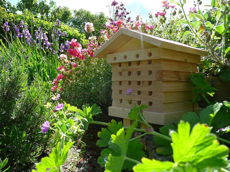 Wildlife World Interactive Solitary Beehive