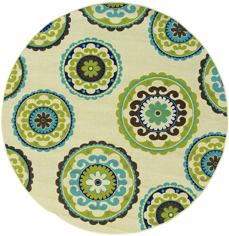 Amazon.com: Oriental Weavers 859J6 Caspian Outdoor/Indoor Area Rug ...