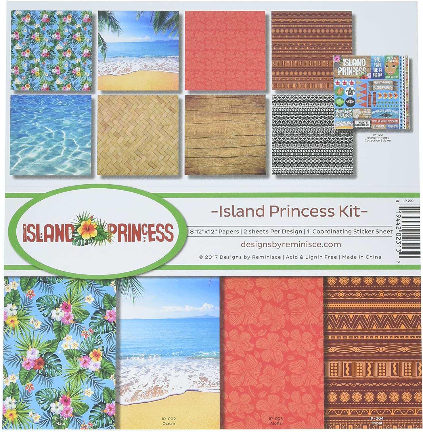 Baby Girl Delivery Scrapbook Paper 5 Sheets Reminisce Baby Basics