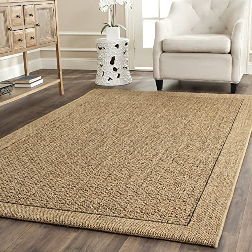 Safavieh Palm Beach Collection PAB355A Natural Sisal Jute Area Rug 4 x 6