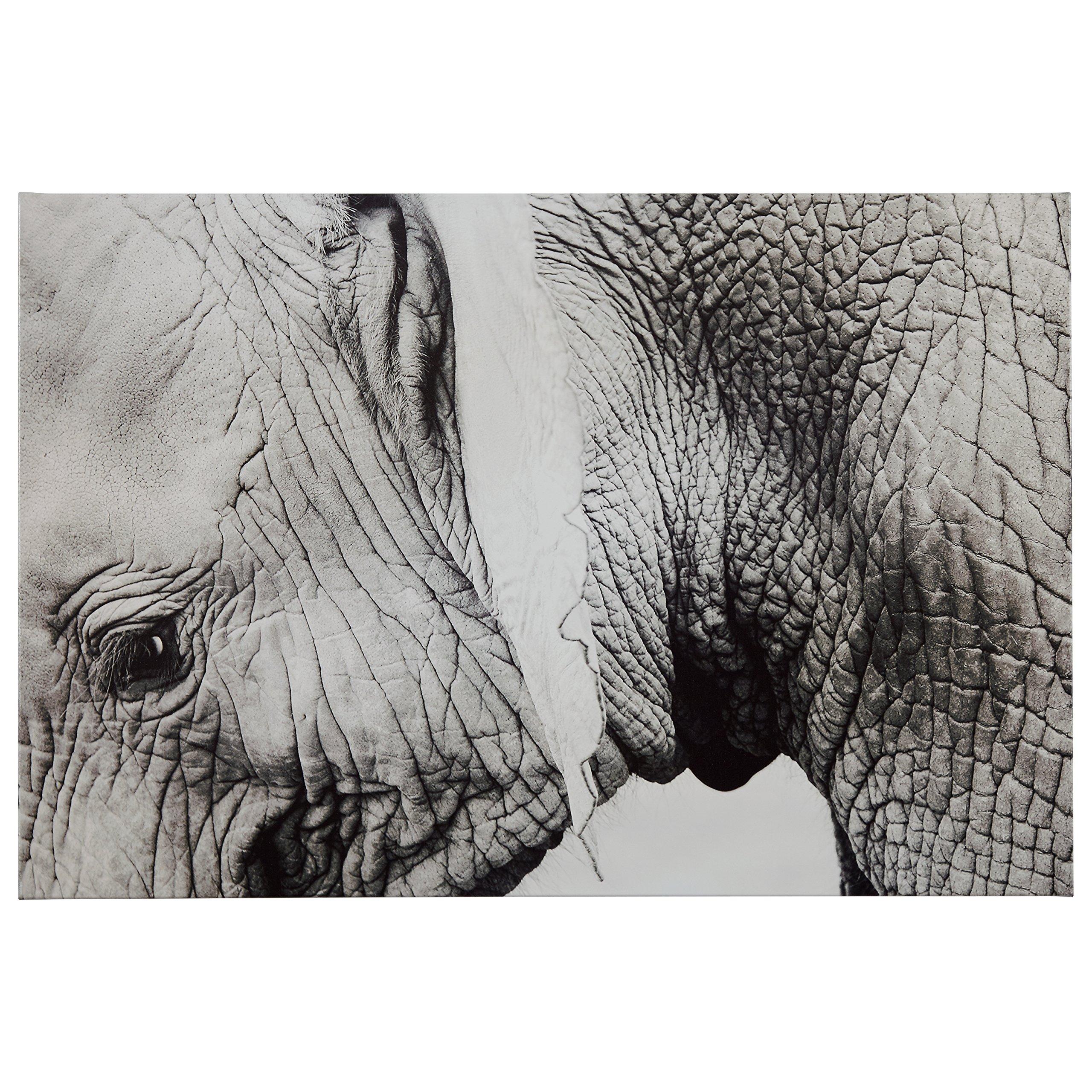 Up Close Black and White Elephant Photo Canvas Print, 45'' x 30''