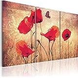 FORMATO GRANDE + Impresion en calidad fotografica + 3 partes + flores + cuadro 030110-4 + 120x80 cm +++ GRAN VARIEDAD DE CUADROS Y IMPRESOS ARTÍSTICOS EN NUESTRA TIENDA VIRTUAL +++
