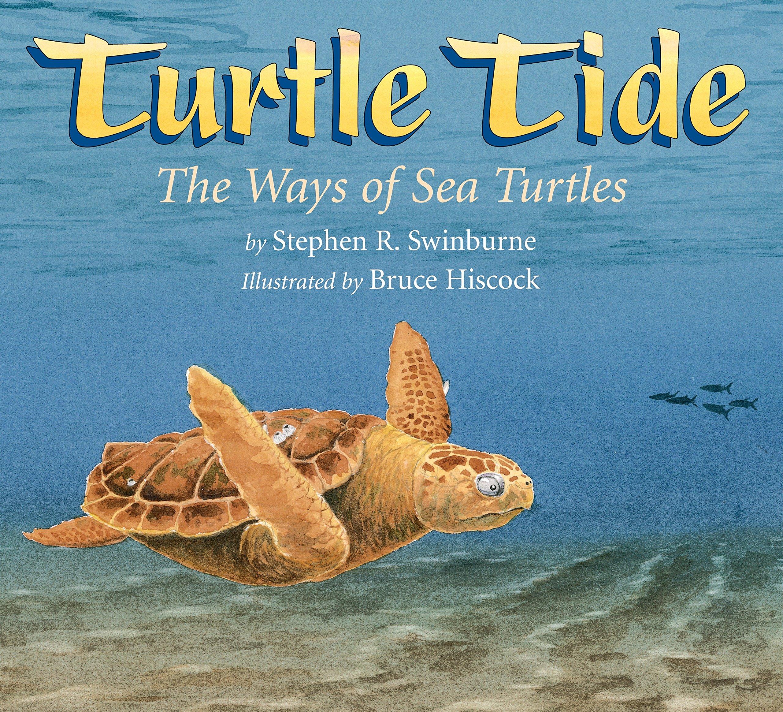 Turtle Tide: The Ways of Sea Turtles PDF