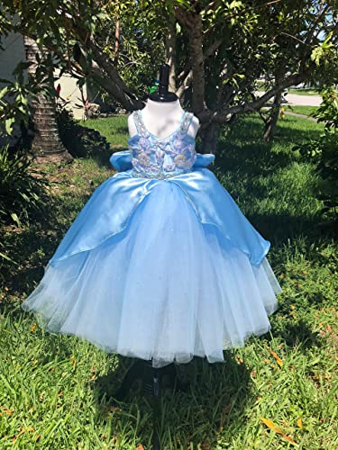1b79b1ecc70 Amazon.com  Princess Cinderella Dress-Disney inspired Cinderella Dress-Princess  Birthday Dress-Flower Girl Dress  Handmade