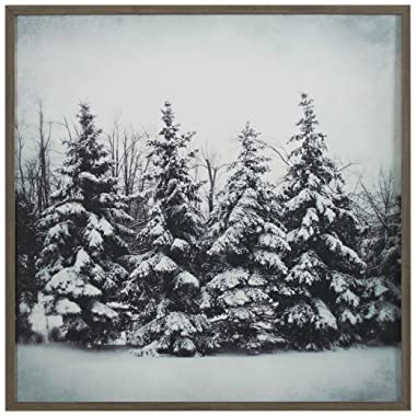 Modern Black and White Print Wall Art of Forest Snow, Grey Frame, 12  x 12