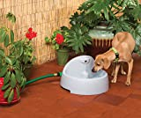 PetSafe Drinkwell Everflow Indoor/Outdoor Dog and