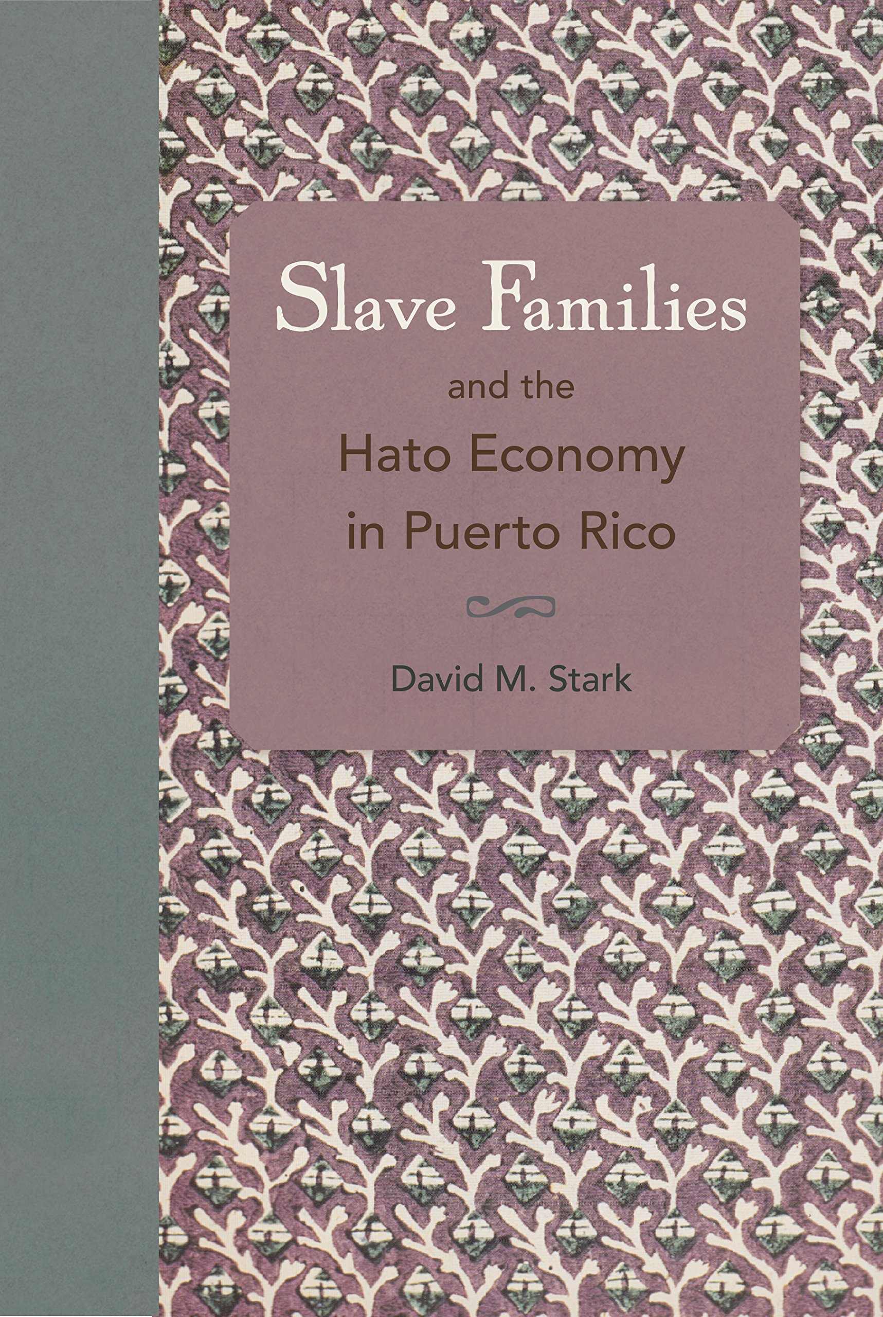 Slave families and the hato economy in puerto rico david m stark slave families and the hato economy in puerto rico david m stark 9780813060439 amazon books aiddatafo Gallery