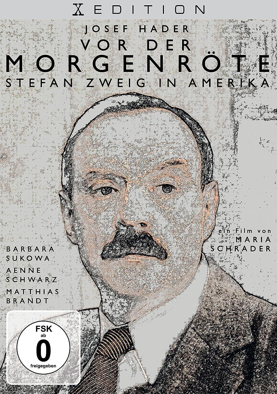 Vor der Morgenröte - Stefan Zweig in Amerika [Alemania] [DVD]