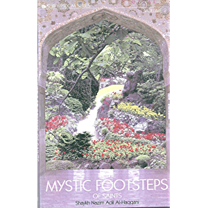 In the Mystic Footsteps of Saints