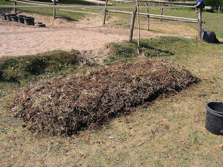 Compost gusanos comprar - 500 Unidades/saco - Compost Starter ...