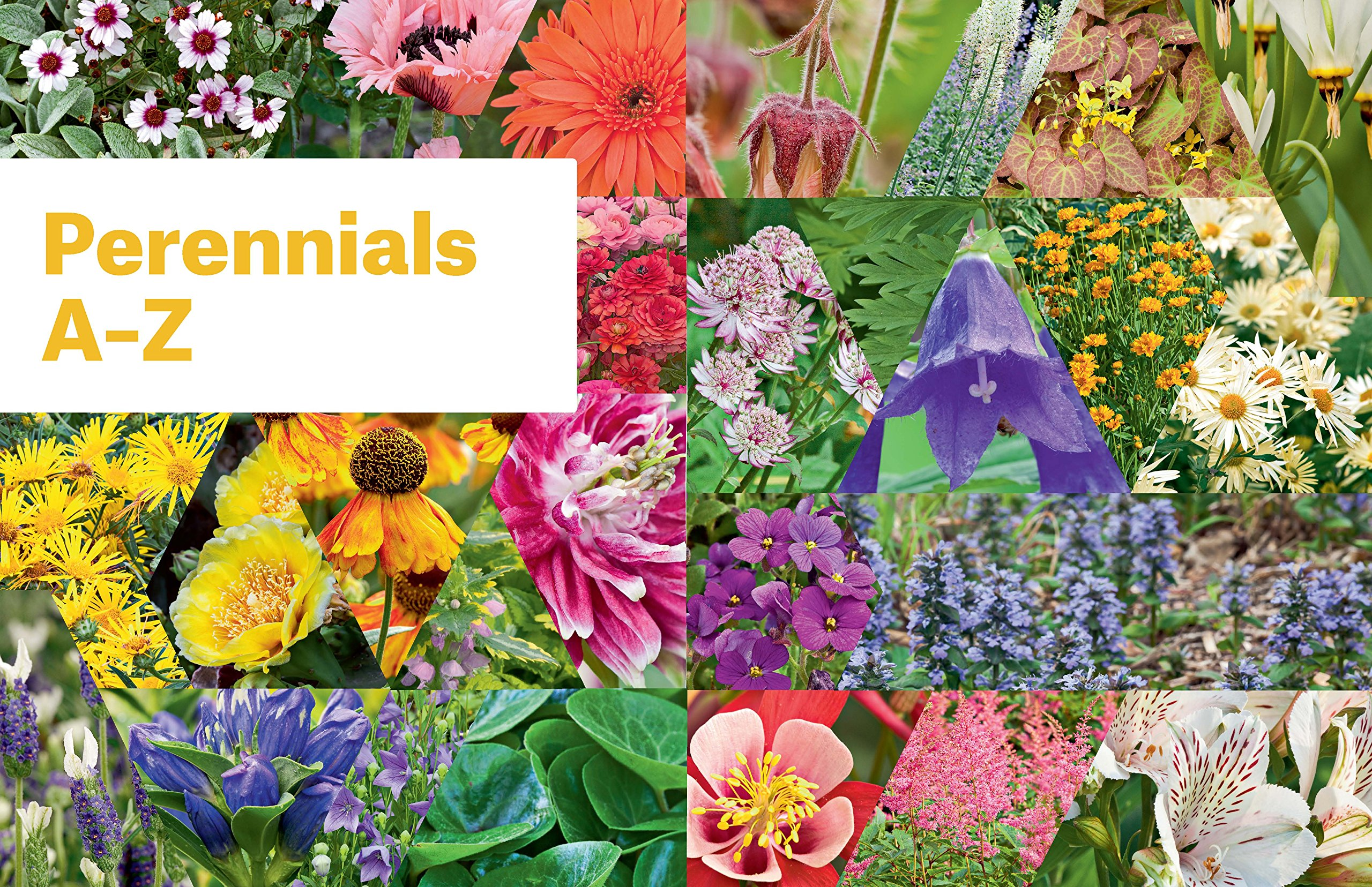Essential Perennials The Complete Reference To 2700 Perennials For