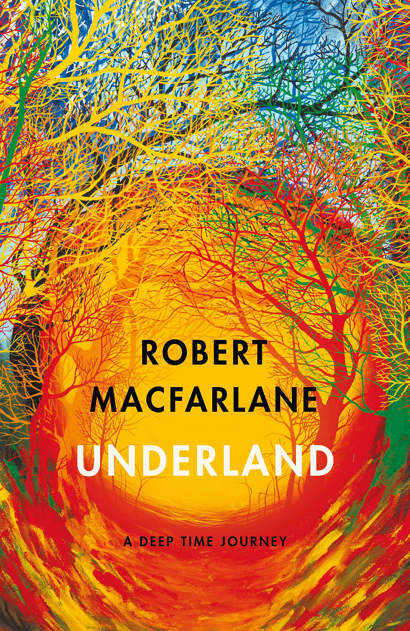 Underland: A Deep Time Journey: Amazon.co.uk: Macfarlane, Robert ...