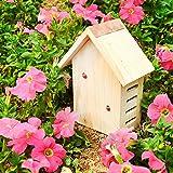 Gardirect Wildlife Wooden Ladybird