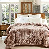 Chanasya Super Soft Fuzzy Faux Fur Cozy Warm Fluffy Plush Sherpa Beige Fur Microfiber Bed Throw Blanket ( Queen / Full ) - Beige Brown Waivy Fur Pattern