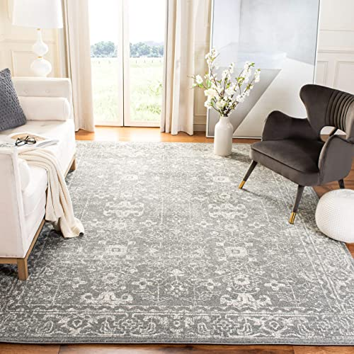 Safavieh Evoke Collection EVK270S Shabby Chic Distressed Non-Shedding Stain Resistant Living Room Bedroom Area Rug