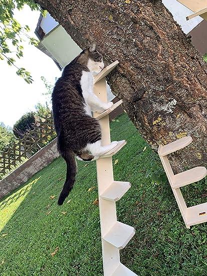 Elmato Escalera para Gatos: Amazon.es: Productos para mascotas