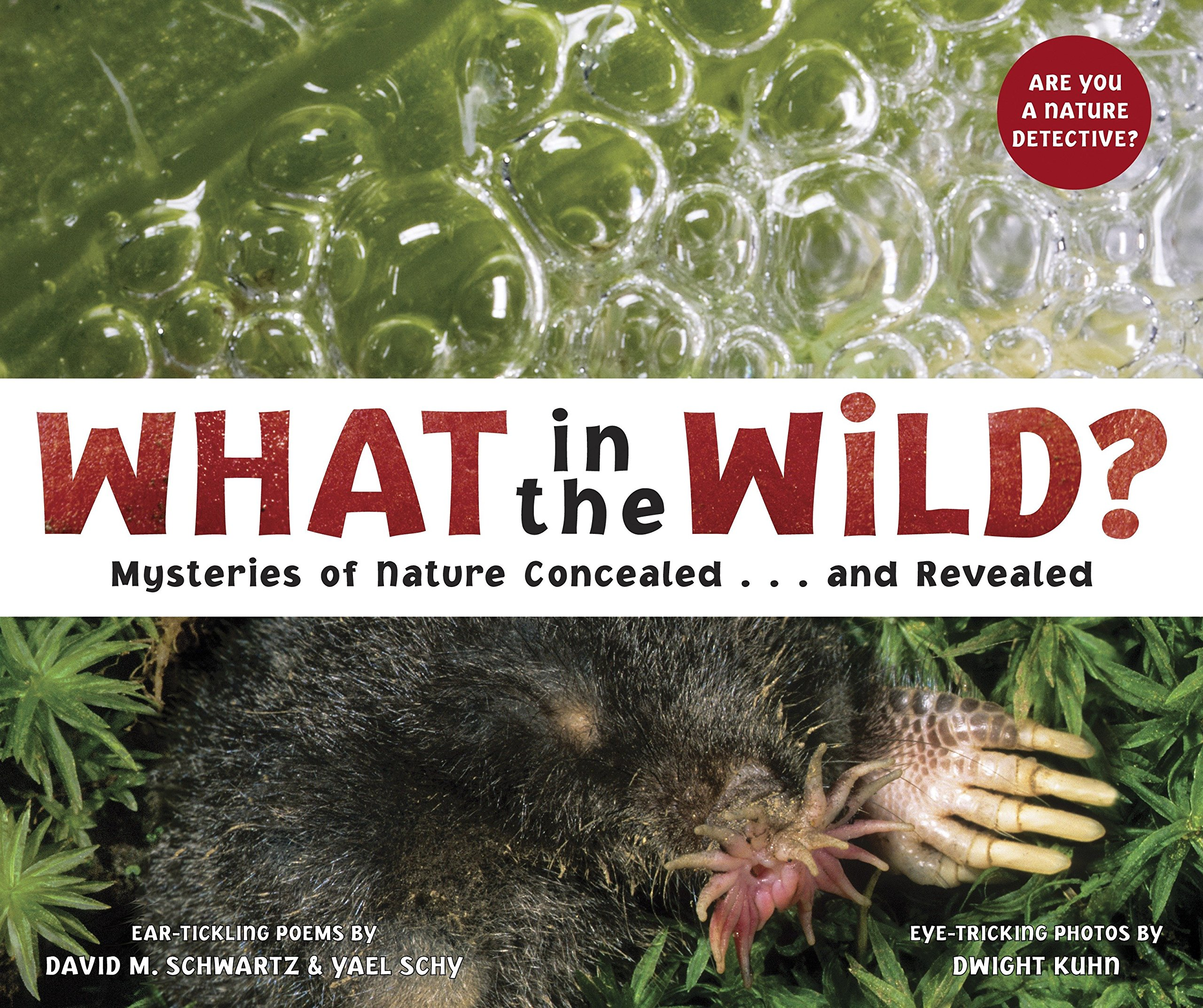 Download What in the Wild?: Mysteries of Nature Concealed . . . and Revealed pdf epub