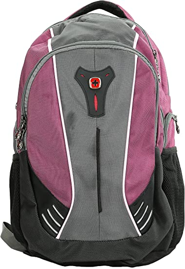 Amazon.com: Swiss Gear Jupiter Backpack With 16