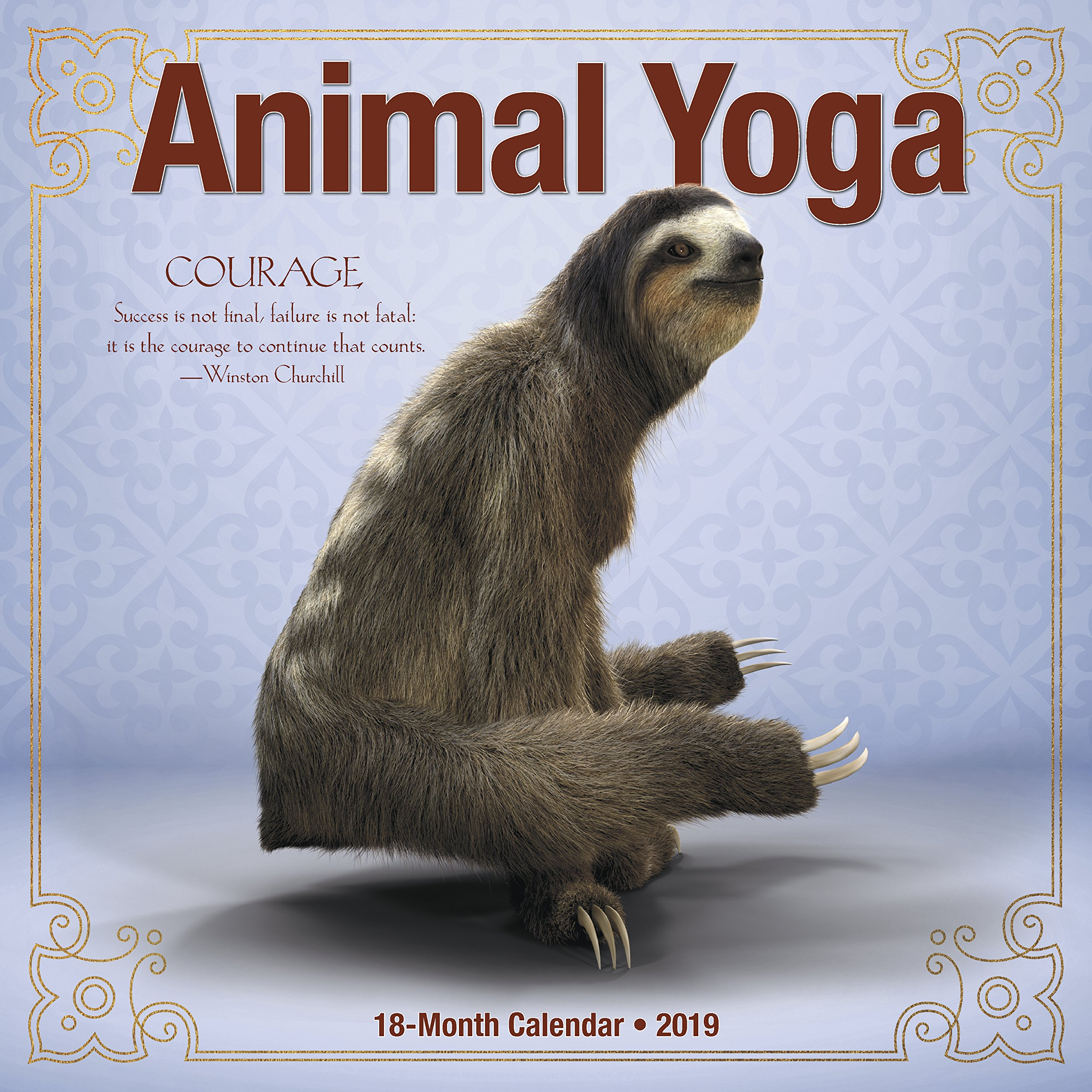Animal Yoga 2019 Calendar: Amazon.es: Willow Creek Press ...