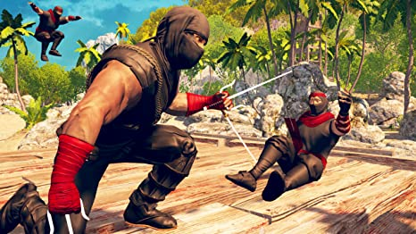 Amazon.com: Samurai Ninja Assassin Hero : Evil Ninja Killer ...