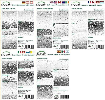 Kit de culture Hokka/ïdo Cucurbita maxima 10 graines Potiron SAFLAX