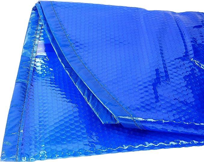 Algenschnapper Adaptateur Universel pour aspirateur de Sol Bleu raccord /à vis 80 mm sur raccord de Tuyau 32 mm
