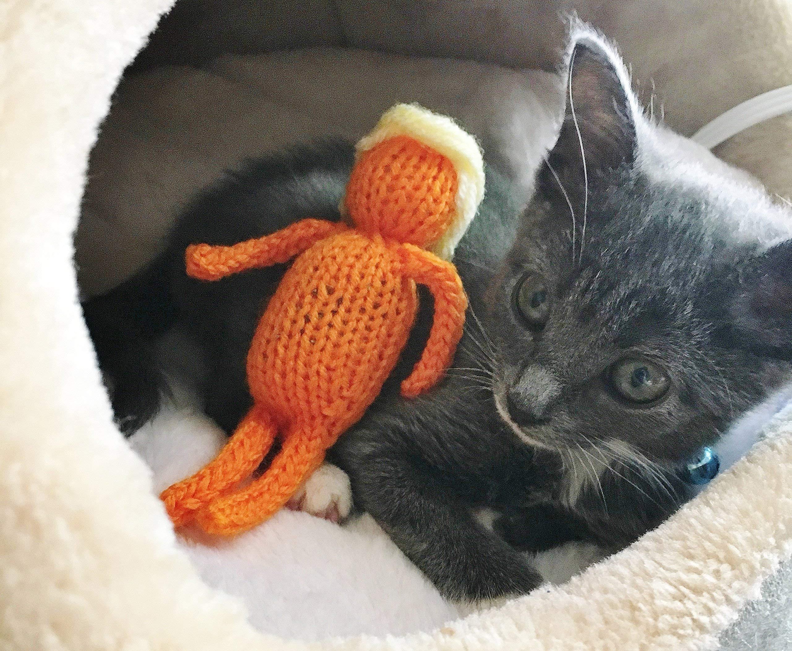 Trump Cat Toy, Catnip Trump Toy, Resist, Not My President