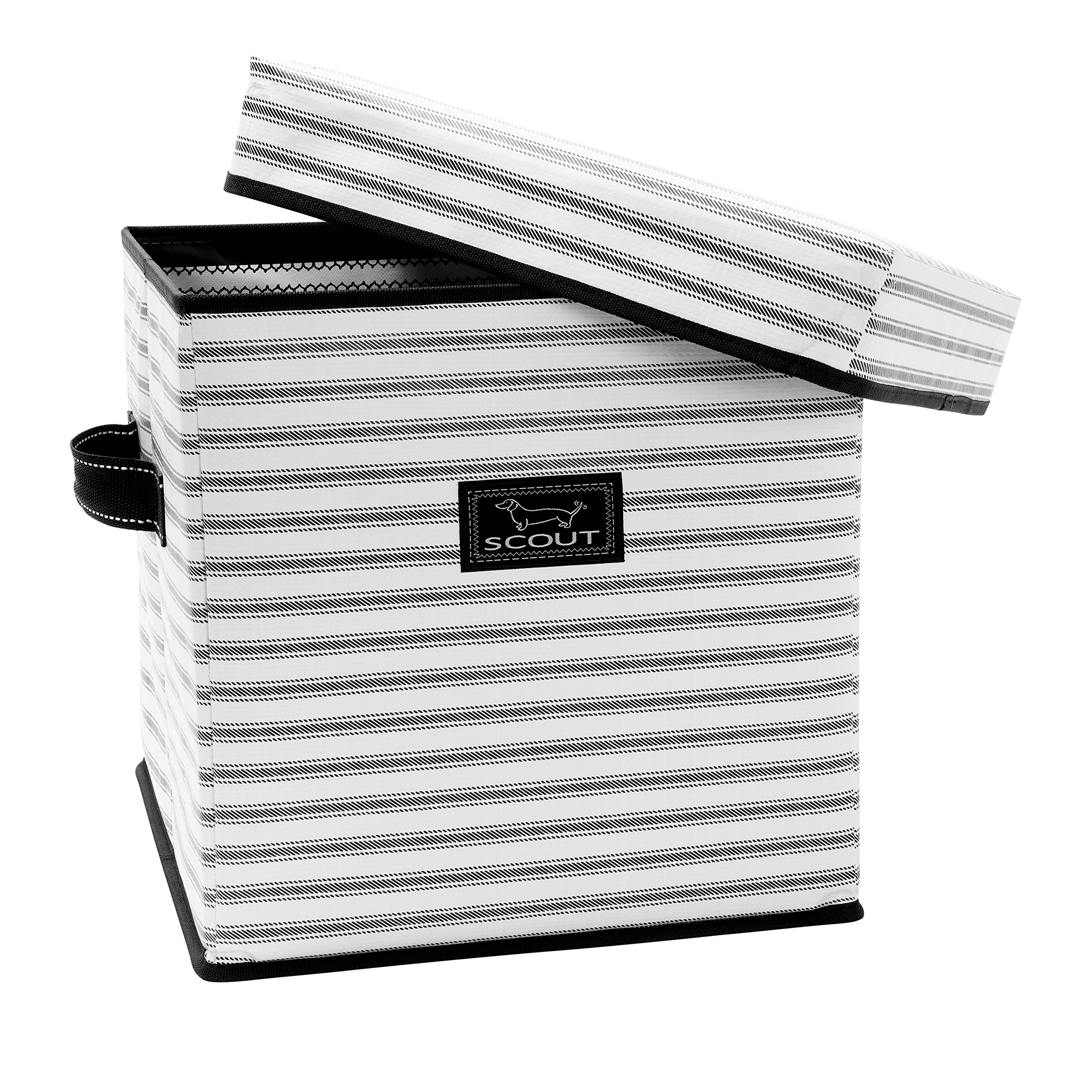 SCOUT Rump Stump Lidded Storage Cube, Collapsible and Stackable, Reinforced Side Handles and Bottom, Water Resistant, College Ruled