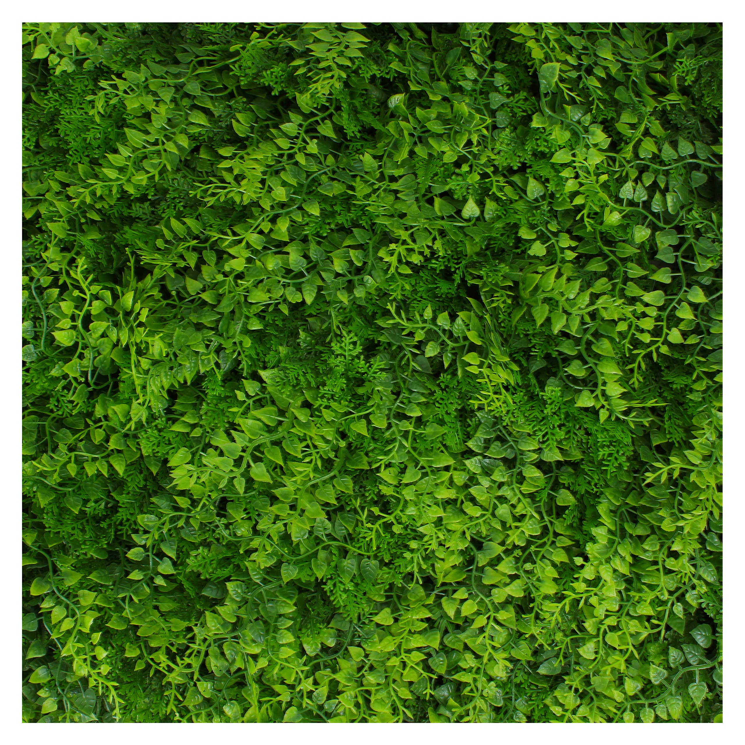 Artificial Hedge - Outdoor Artificial Plant - Great Fern and Ivy Substitute - Sound Diffuser Privacy Fence Hedge - Topiary Greenery Panels (4, Juniper)