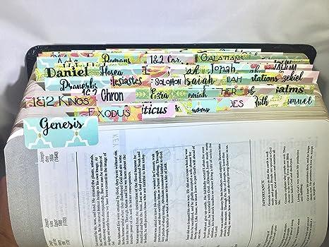 Pestañas Para Biblia Para Principiantes Office Products