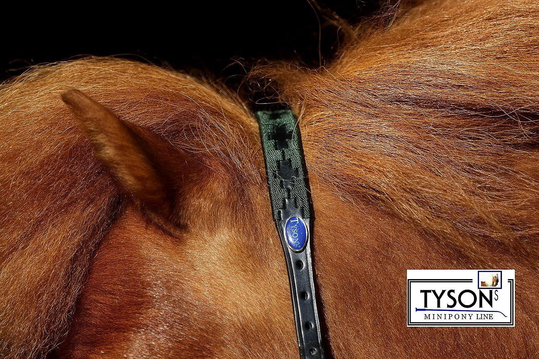 Tysons Breeches Lederhalfter Winny Polo Leder Halfter Minishetty Mini Shetty Minipony Schwarz Braun ZART !