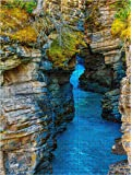 1500 Piece Puzzle for Adults/Teen - Large Jigsaw Puzzle Athabasca Falls Canyon in Autumn