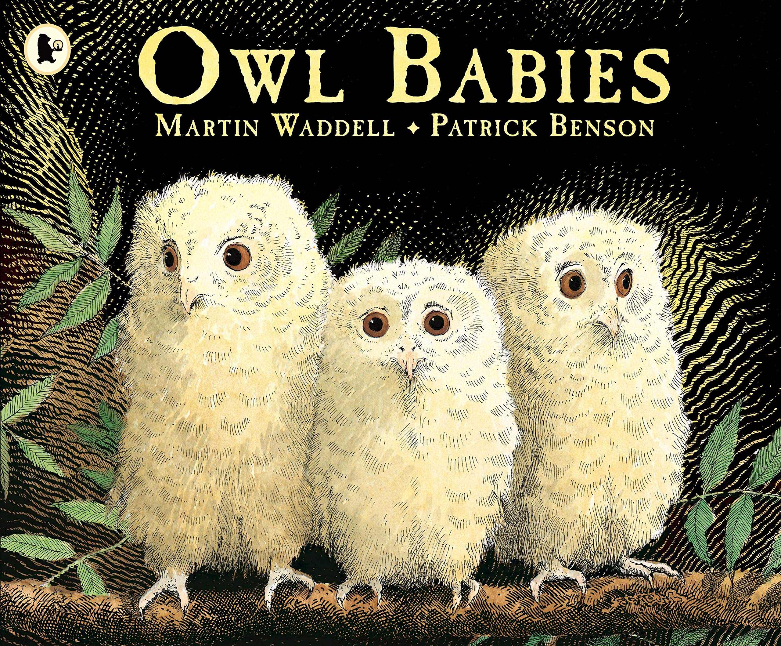 Owl Babies: 1: Amazon.co.uk: Martin Waddell, Patrick Benson ...
