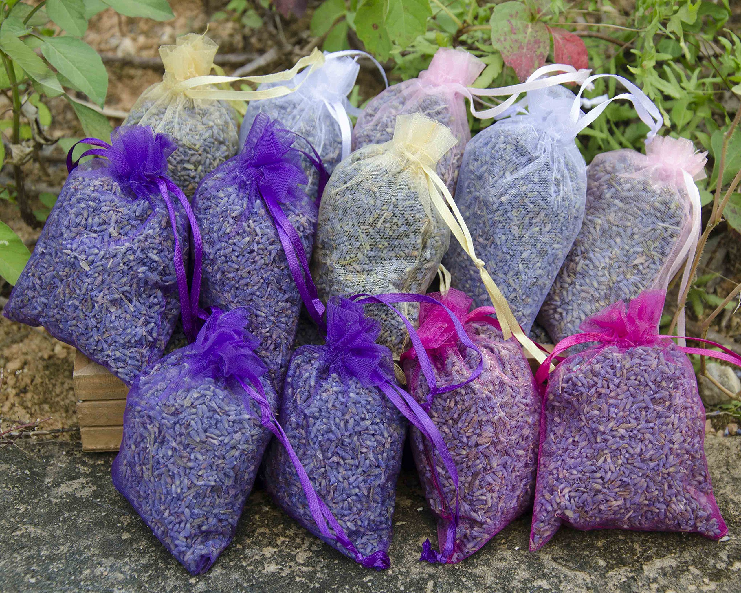 Lavande Sur Terre Pack of 12 Large Lavender Sachets Filled with French Lavender Flower Buds - Natural Deodorizer - Premium Ultra Blue Lavender Flower Buds