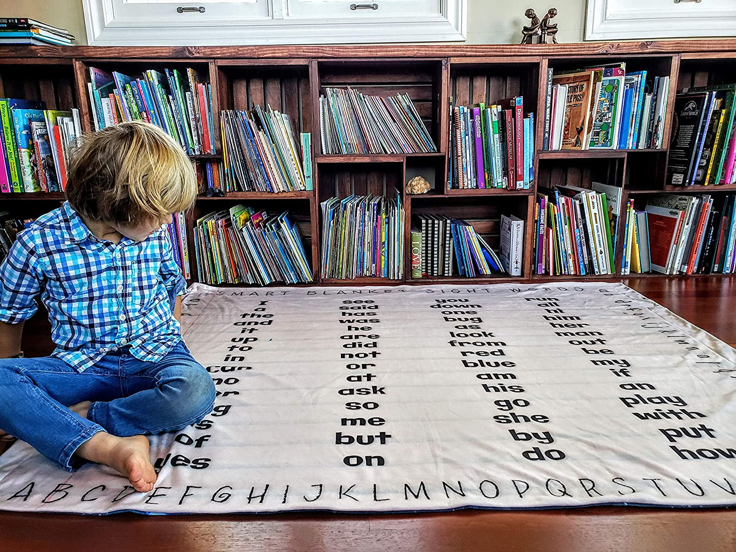 birdyboutique.com Educational Blanket Sight Words Learn How to Read Sounds Early Reader Dolch Fry List Prek Kindergarten Toddler Soft Mink for Kids Large 50x60 Double Layered