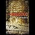 The Binding: A Lamb and Lavagnino Mystery (Lamb & Lavagnino)